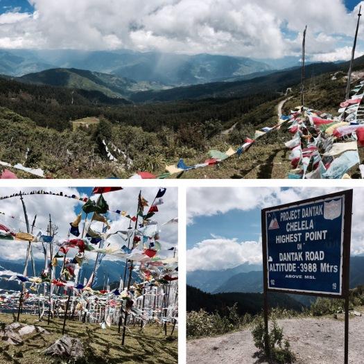 chelela-pass in bhutan