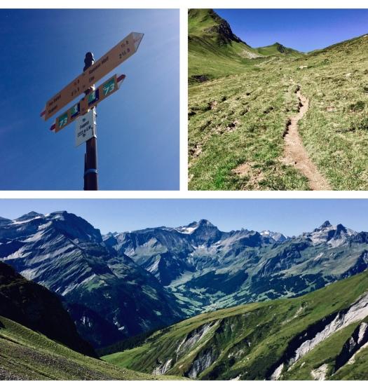 via alpina foopass