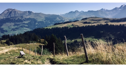 via alpina lenk trüttlisbergpass
